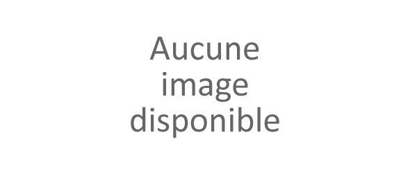 Accessoires machines/Pied de biche